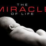 case: 「結節性硬化症」「胎児アルコール症候群」と診断された男の子